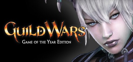 Guild Warssupsup Game of the Year Edition
