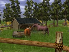 Wildlife Park 2 - Horses Screenshot 7